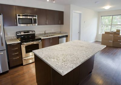 Andino White Granite Kitchen Countertop